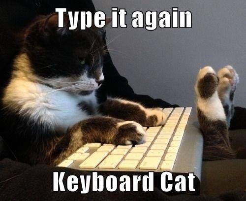 Type it again  Keyboard Cat