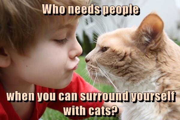 needs cat people who surround caption - 8993164032