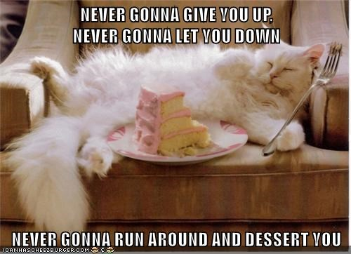 never gonna give you up you cat down dessert caption let