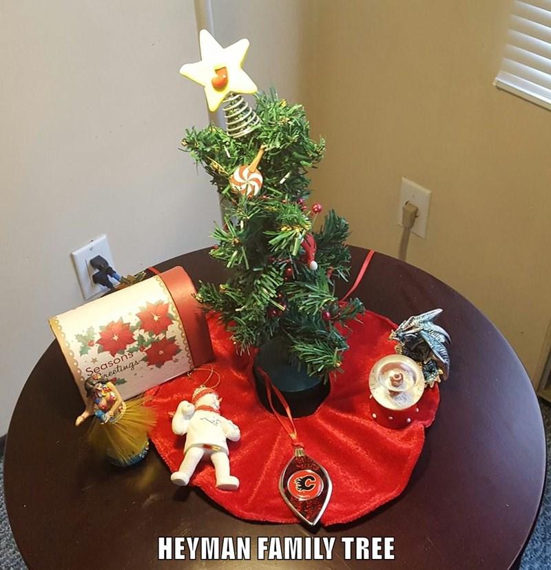 HEYMAN FAMILY TREE