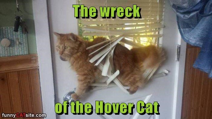 The wreck  of the Hover Cat