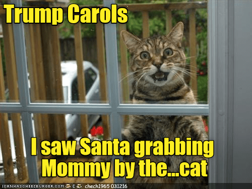 carols cat grabbing mommy trump santa caption