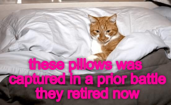 peaceful pillows