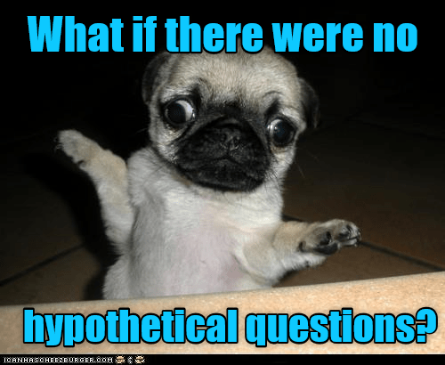 caption hypothetical questions no what if - 8993891072
