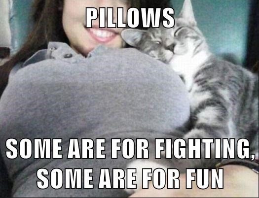 PILLOWS  SOME ARE FOR FIGHTING, SOME ARE FOR FUN