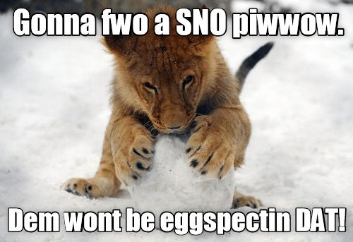 Snobol Piwwow?  Snobol Piwwow! - Pillow Fyte 2016