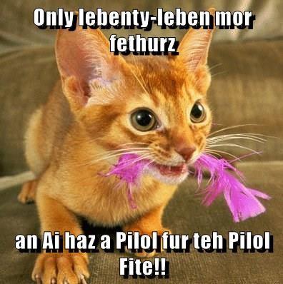 Only lebenty-leben mor fethurz  an Ai haz a Pilol fur teh Pilol Fite!!