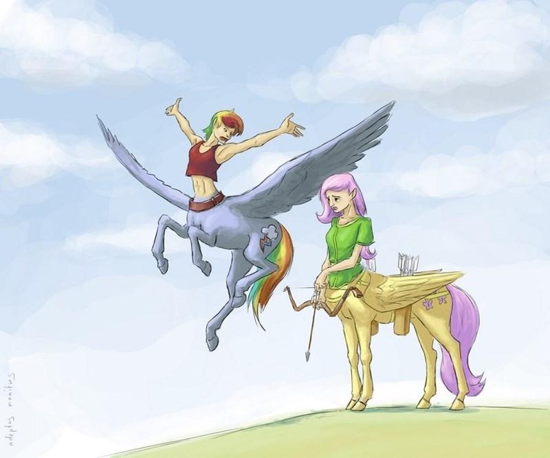 centaur,ponify,fluttershy,rainbow dash