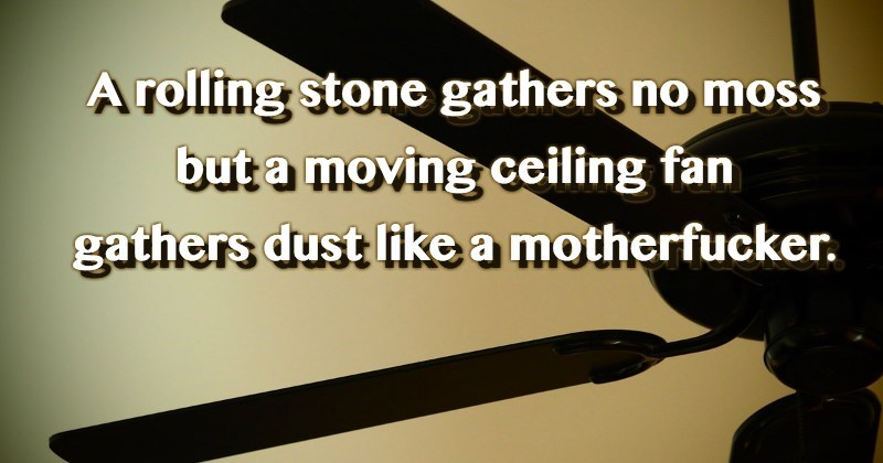 Font - A rolling stone gathers no moss but a moving ceiling fan gathers dust like a motherfucker.