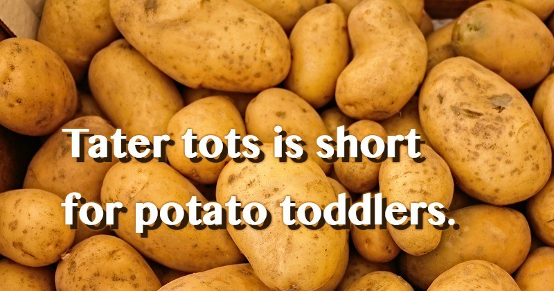 Potato - Tater tots is short for potato toddlers.