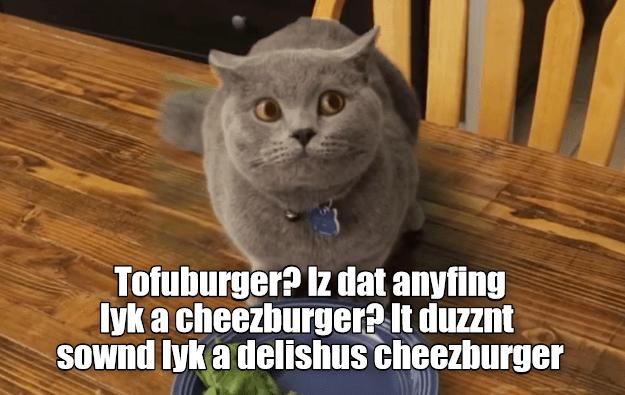 Cheezburger Image 8994232832