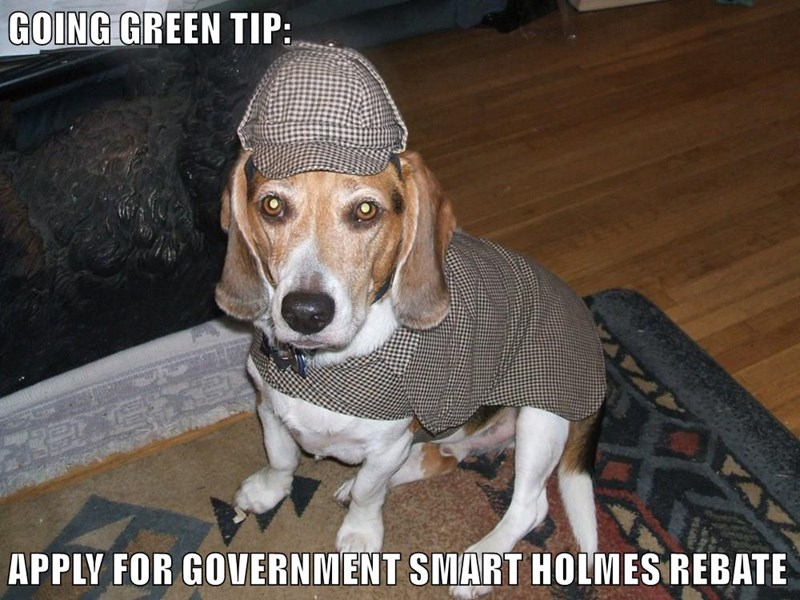 GOING GREEN TIP:  APPLY FOR GOVERNMENT SMART HOLMES REBATE