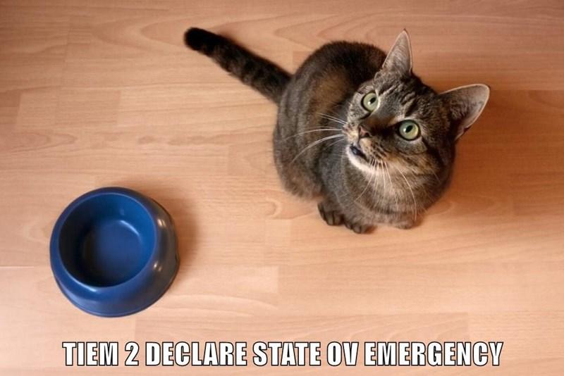 TIEM 2 DECLARE STATE OV EMERGENCY