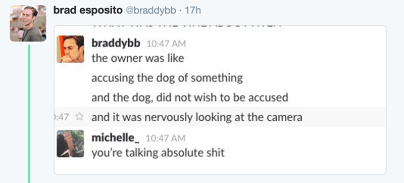 Text - brad esposito @braddybb 17h braddybb 10:47 AM the owner was like accusing the dog of something and the dog, did not wish to be accused 47and it was nervously looking at the camera michelle 10:47 AM you're talking absolute shit