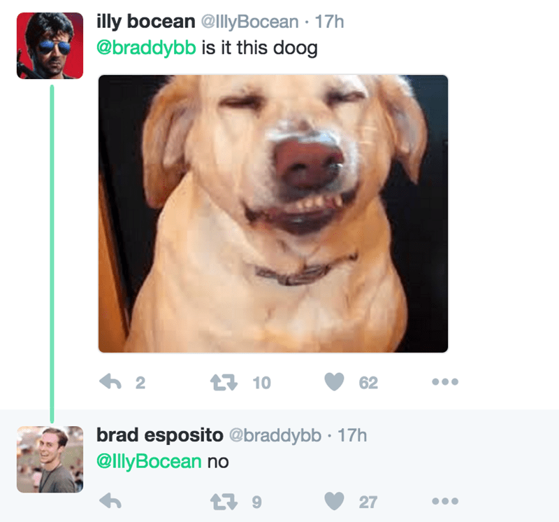 Dog - illy bocean @llyBocean 17h @braddybb is it this doog h 2 t10 62 brad esposito @braddybb 17h @IllyBocean no 9 27