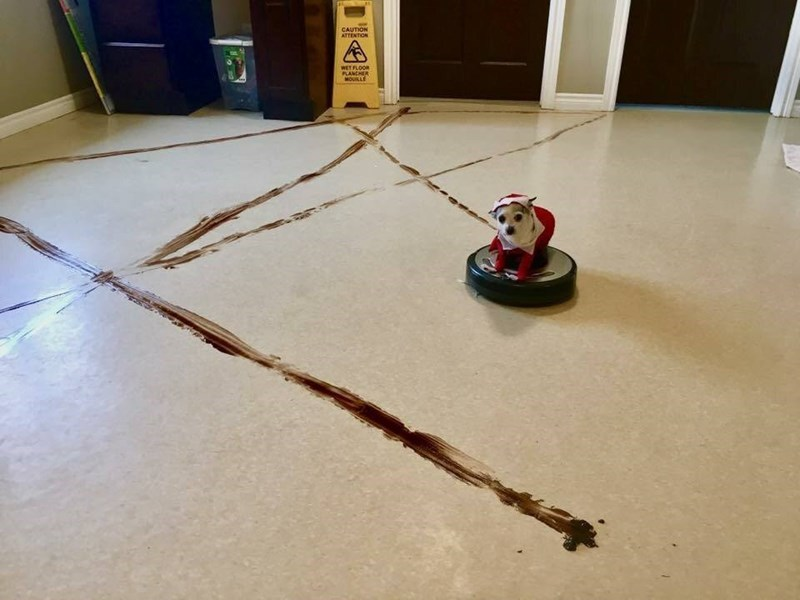 Floor - CAUTION ATTENTION WET FLOOR PLANCHER MOUILLE