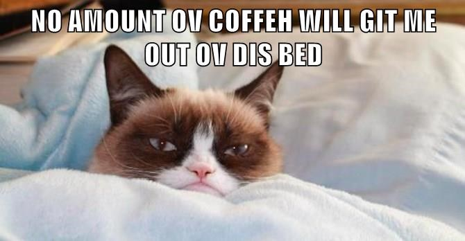 Grumpy Cat out bed get amount coffee caption no