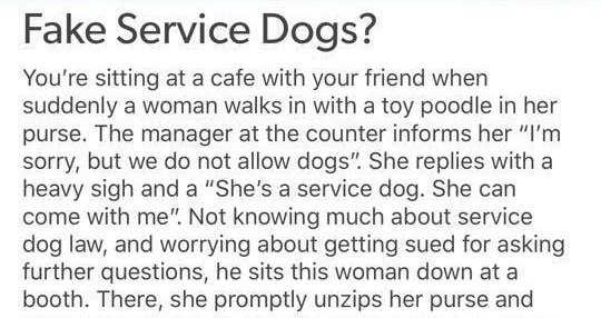 Tumblr thread about dangers of fake service dogs | Fake Service Dogs sitting at cafe with friend suddenly woman walks with toy poodle her purse manager at counter informs her sorry, but do not allow dogs She replies with heavy sigh and She's service dog. She can come with Not knowing much about service dog law, and worrying about getting sued asking further questions, he sits this woman down at booth. There, she promptly unzips her purse and