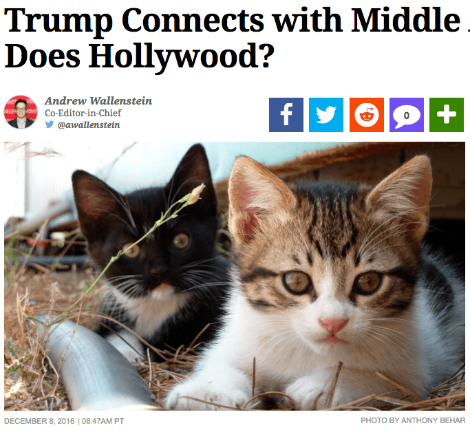 Cat - Trump Connects with Middle Does Hollywood? Andrew Wallenstein fy tg HeCo-Editor-in-Chief @awallenstein PHOTO BY ANTHONY BEHAR DECEMBER 8, 2016 | 08:47AM PT +