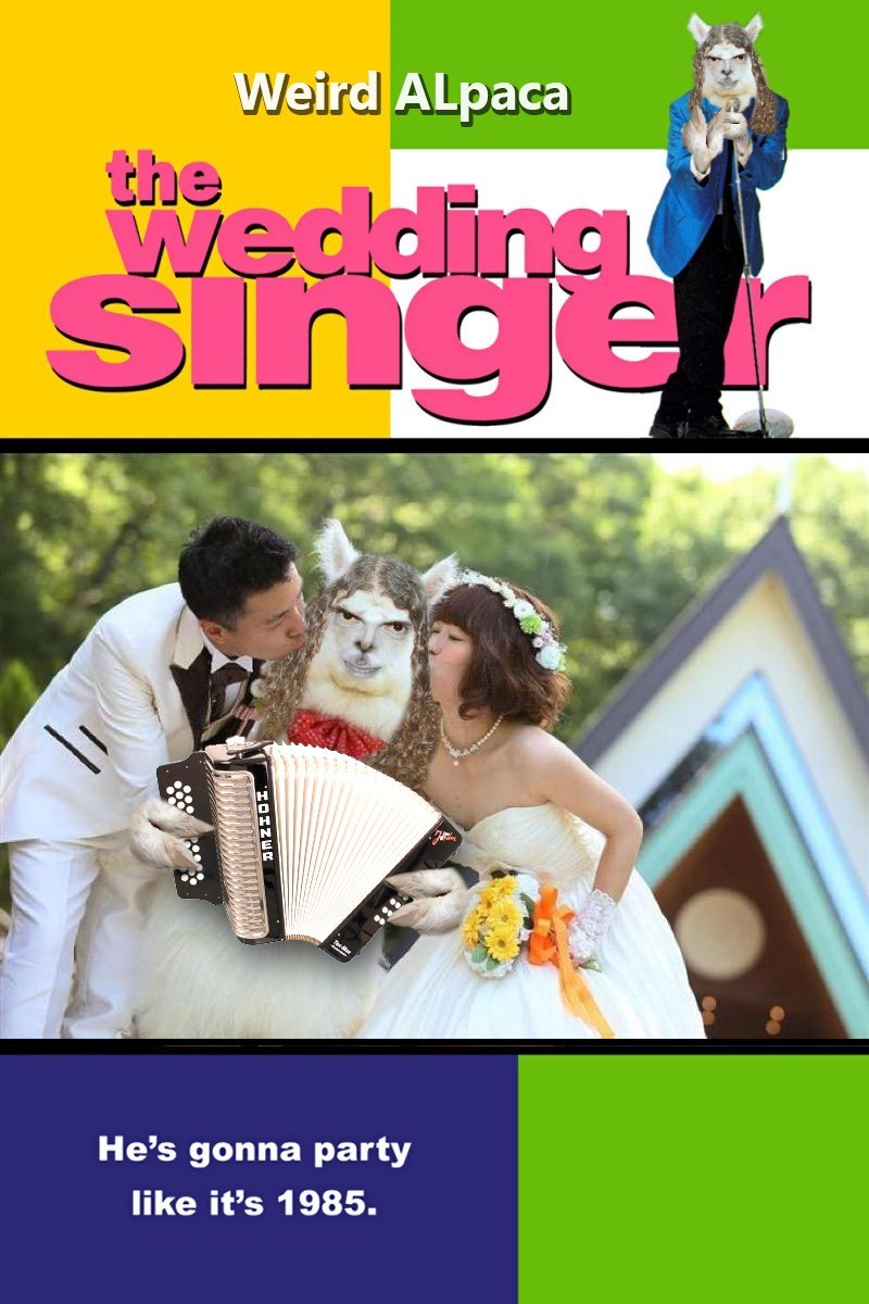 Photograph - Weird ALpaca the Wedding Singer He's gonna party like it's 1985. HQHNER