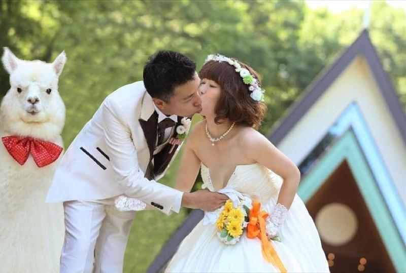 Bride - NOP