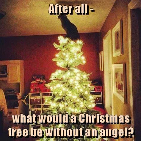 christmas angel cat without would be what caption - 8995344128