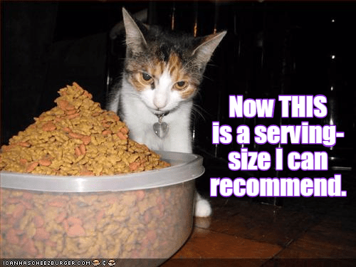 serving cat recommend size caption