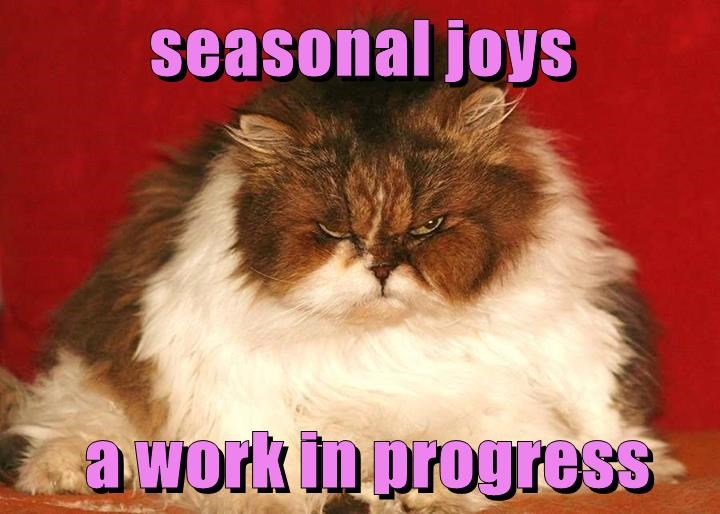cat seasonal work joys progress caption - 8995535872