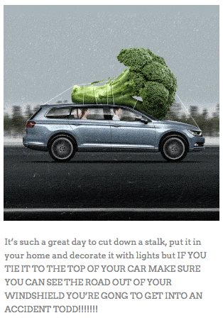 Land vehicle - It's such a great day to cut down a stalk, put it in your home and decorate it with lights but IP YOU TIE IT TO THE TOP OF YOUR CAR MAKE SURE YOU CAN SEE THE ROAD OUT OF YOUR WINDSHIELD YOU'RE GONG TO GET INTO AN ACCIDENT TODD!!!!!