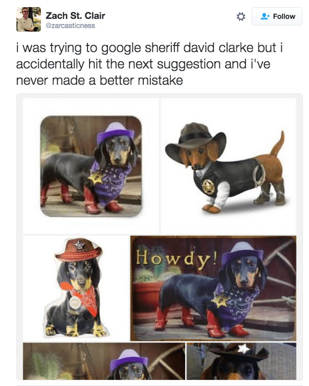 Dog - Zach St. Clair @zarcasticness Follow i was trying to google sheriff david clarke but i accidentally hit the next suggestion and i've never made a better mistake Howdy!