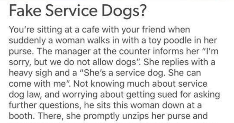 quit your bullshit frustrating FAIL tumblr service dogs mental health ridiculous stupid anxiety - 8995845