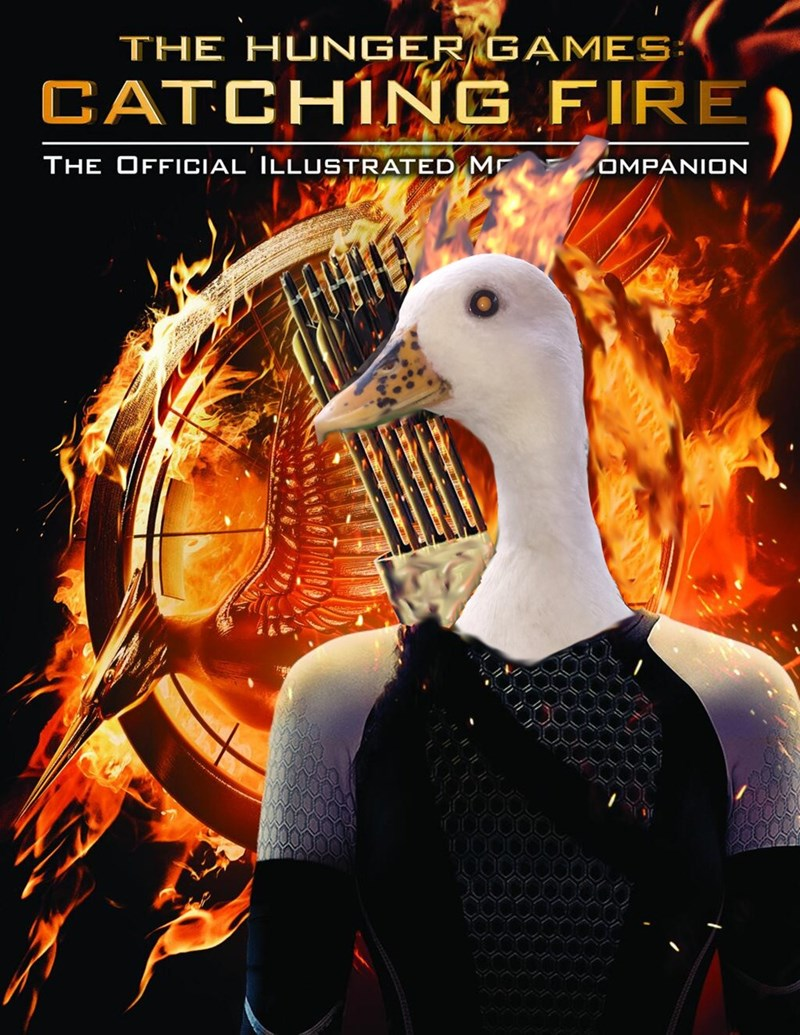 Poster - THE HUNGER GAMES: CATCHING FIRE THE OFFICIAL ILLUSTRATED M OMPANION VVA