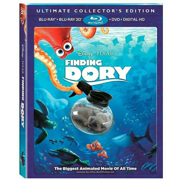 cat fishbowl photoshop battle - Organism - ULTIMATE COLLECTOR S EDITION 3 bDVD+ DIGITAL HD Bluray Disc BLU-RAY+BLU-RAY 3D SNEP PIXAR FINDING DORY The Biggest Animated Movie Of All Time Domestic Box Office, BoxOficeMojo.com DEN PIXAR FINDING D PRY