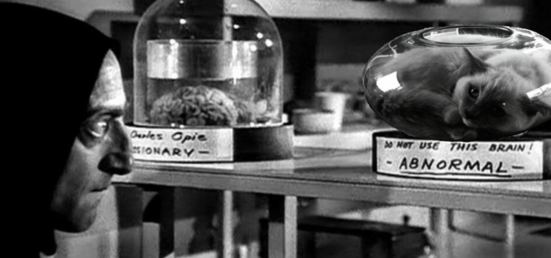 cat fishbowl photoshop battle - Black-and-white - ANOT USETHIS BRAIN 0arles Opie IONARY ABNORMAL