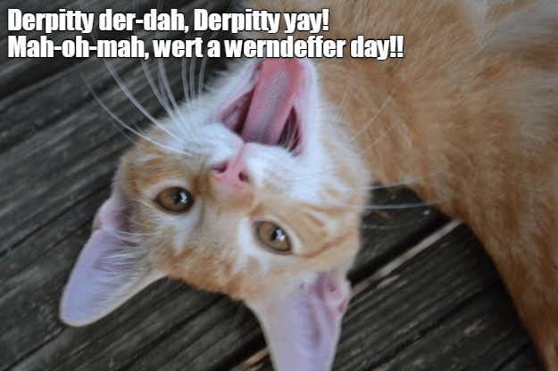 cat der-dah wernderffer derpitty day caption - 8996037632