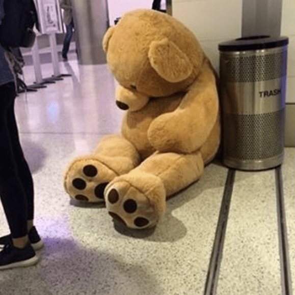 tsa posts sad story of abandonded teddy bear hoax