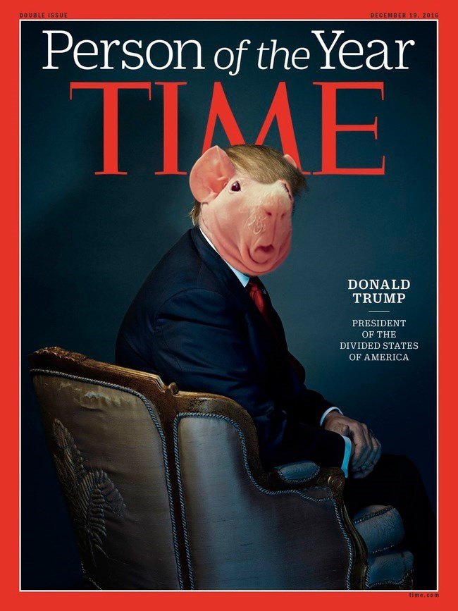 Poster - DOUBLE ISSUE DECEMBER 19, 2016 Person of the Year TIMME DONALD TRUMP PRESIDENT OF THE DIVIDED STATES OF AMERICA time.com