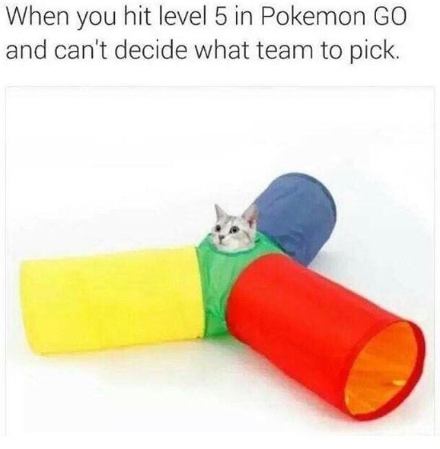 Pokémon - 8996511744
