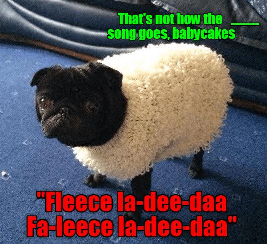 Misheard Song Lyrics I Has A Hotdog Dog Pictures Funny