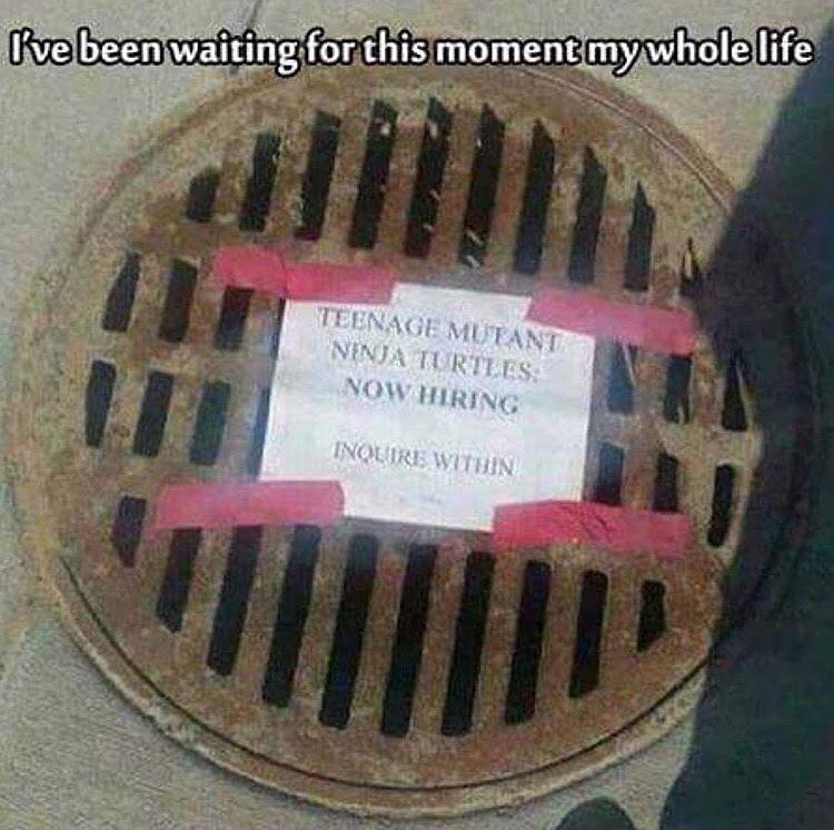 sewer TMNT trolling signs image - 8997002496