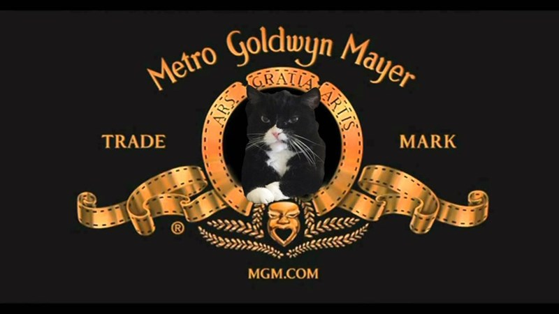 Label - Metro yoldwyn Mayer CRALLA TRADE MARK MGM.COM ARIIS