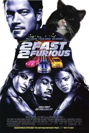 Movie - PROL LER TYRESE G8so RMENDES PRAST FURIOUS HOW FAST DO VOU LIME IT RCT A FCOL 5aunOTRACK FERTURES THE HOT MEUP RNTHEM FROS