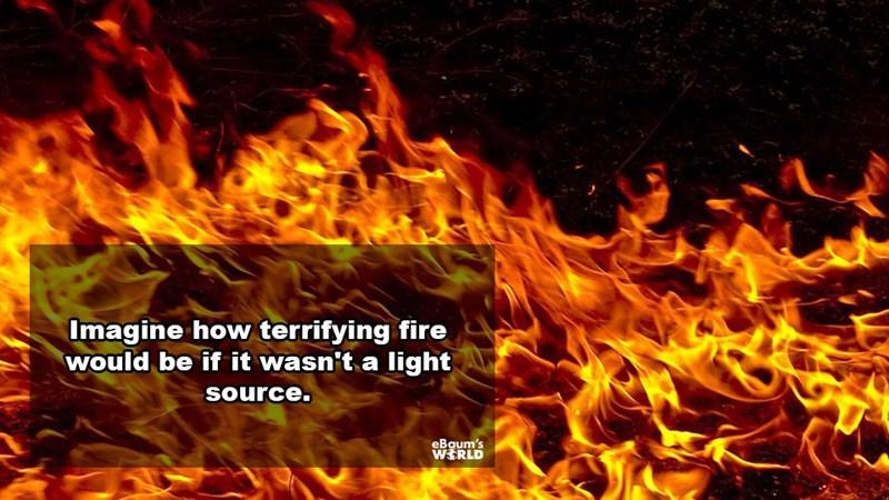 Flame - Imagine how terrifying fire Would be if it wasn't a light source. eBaum's WERLD