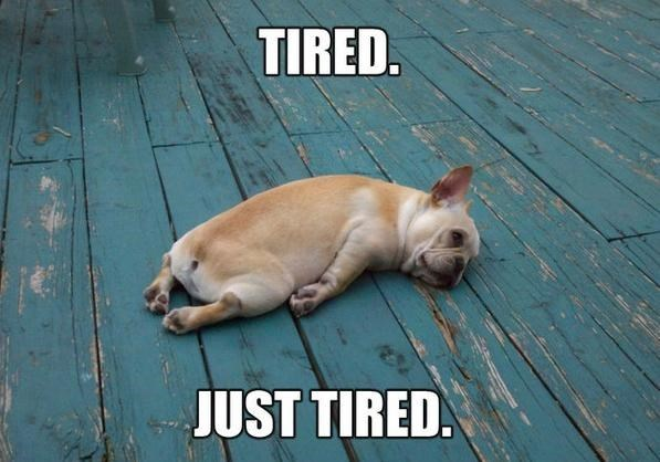 tired - 8997209856