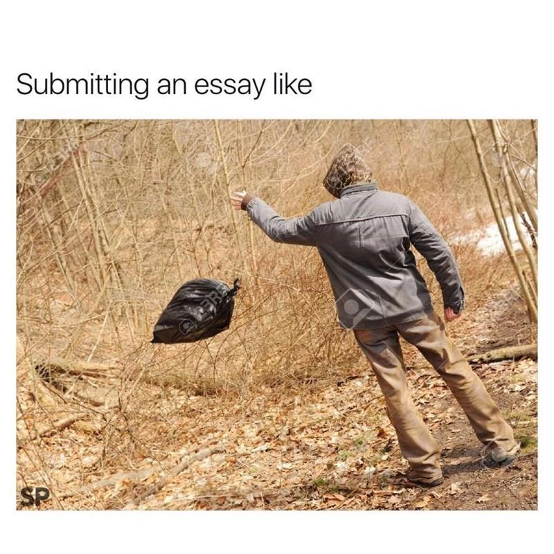 trash,essay,image