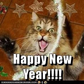 cat happy new year caption