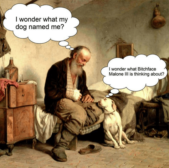 dogs thoughts image - 8998946560