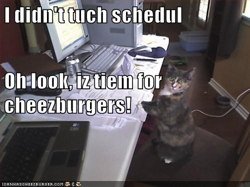 Cheezburger Image 8999014656