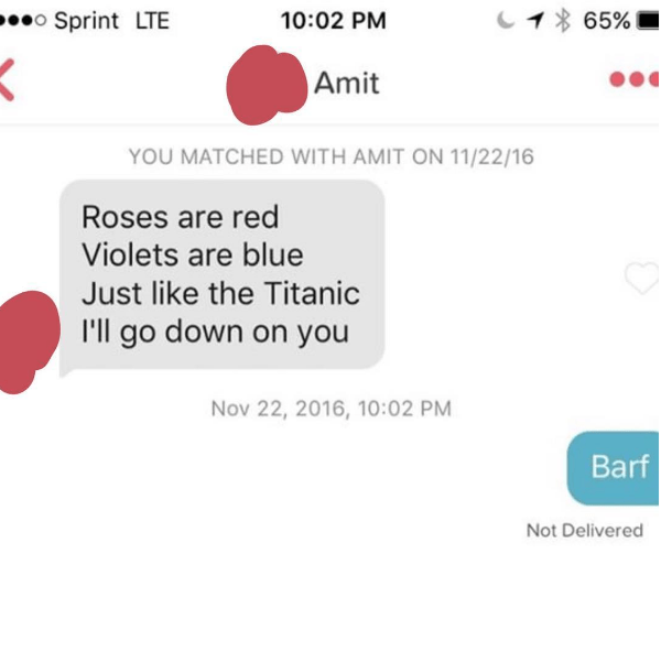 Text - o Sprint LTE 10:02 PM 65% Amit YOU MATCHED WITH AMIT ON 11/22/16 Roses are red Violets are blue Just like the Titanic I'll go down on you Nov 22, 2016, 10:02 PM Barf Not Delivered