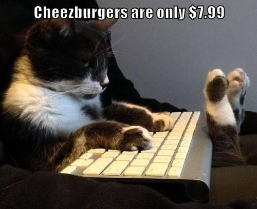 Cheezburger Image 9000021760